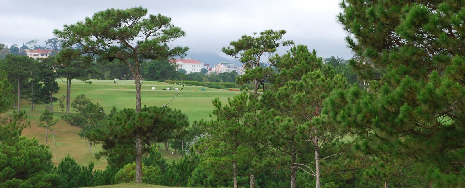 5 Day Golf Dalat and Stay at Palace Heritage Luxury Hotel
