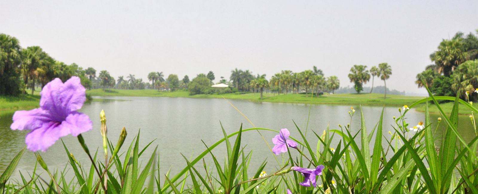 Heron Lake Golf Resort